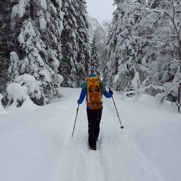 Programme Marche Nordique Février 2019
