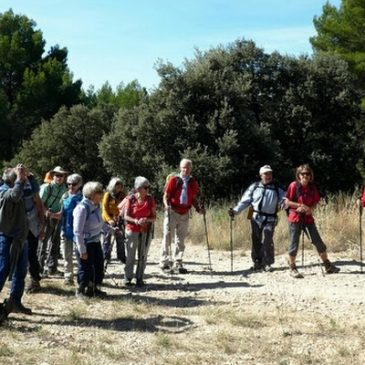La source du Mirail – PEYPIN D'AIGUES